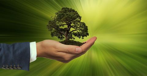 """Solvencia II debe integrar la sostenibilidad de manera """"proporcionada y basada en el riesgo"""""""