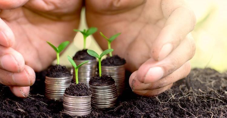 Las aseguradoras europeas comentan la taxonomía de la sostenibilidad