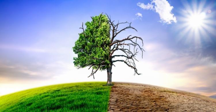 Los efectos directos del cambio climático y la transición energética plantean riesgos para aseguradoras y bancos