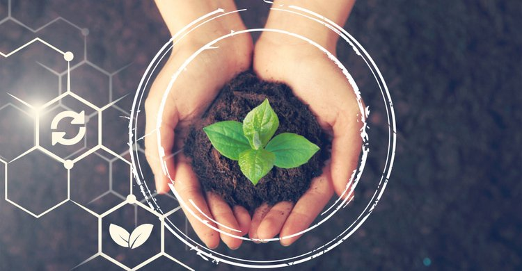 Markel desarrolla una línea de negocio centrada en Responsabilidad Medioambiental