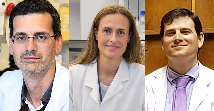 Concedidos los Premios a la Investigación Fundación Jesús Serra