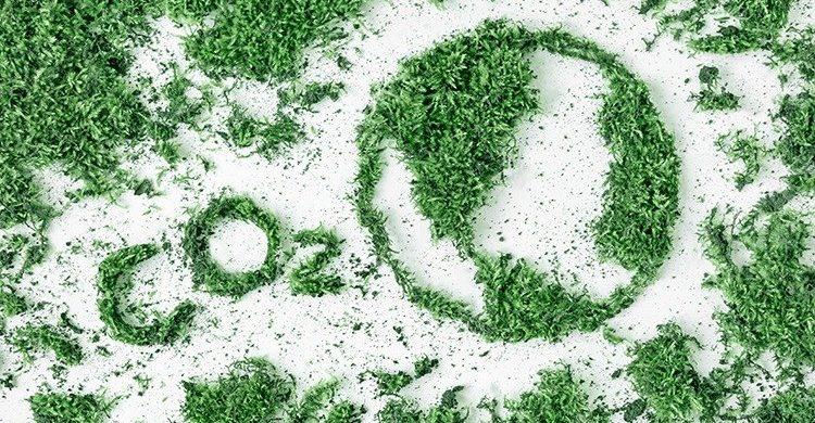 loyd's revela la hoja de ruta para acelerar la transición hacia las cero emisiones